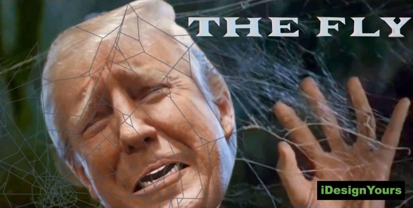 Mueller Investigation
